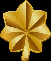 police rank insignias